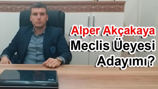 Alper Akçakaya Meclis Üyesi Adayımı?